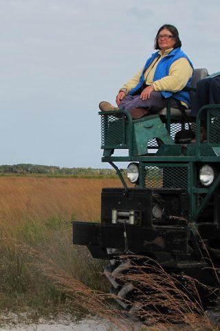 Swamp Buggy Kissimmee Prairie Preserve